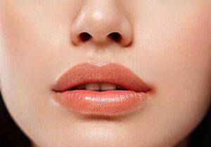 Todo lo que debes saber sobre las boqueras